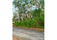 Sion Hill Mahogany Woods Land, St. James  #98046