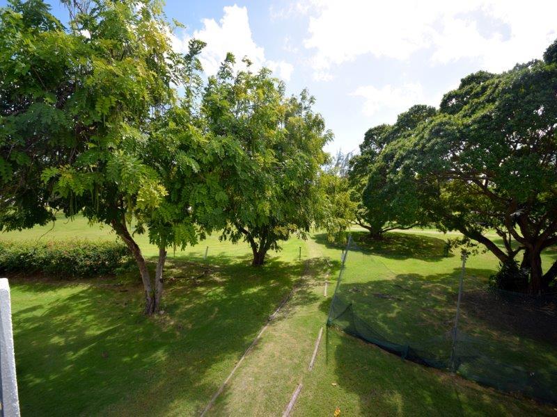 Bushy Park 632_Image14
