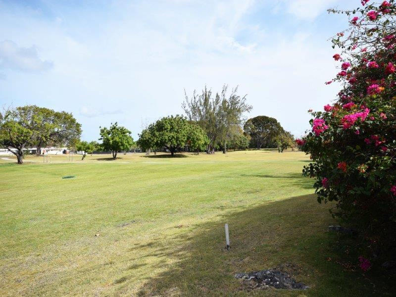 Bushy Park 632_Image15